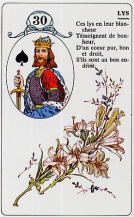 lys-lenormand-natur-angelys-tournai